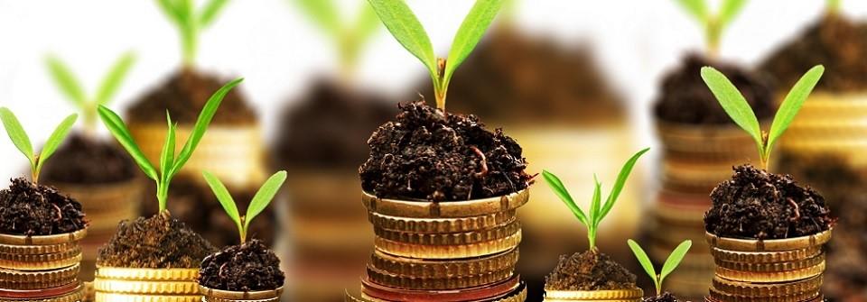 Cómo calcular la inversión inicial en el negocio y su financiación